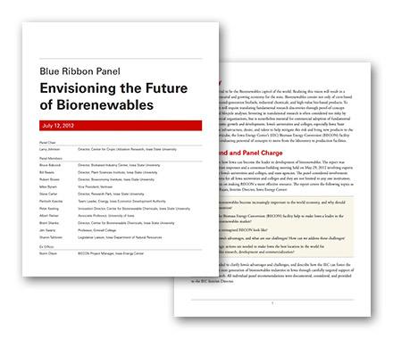 Envisioning the Future of Biorenewables