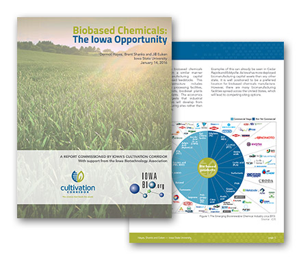 Iowa Biochemical Full Report