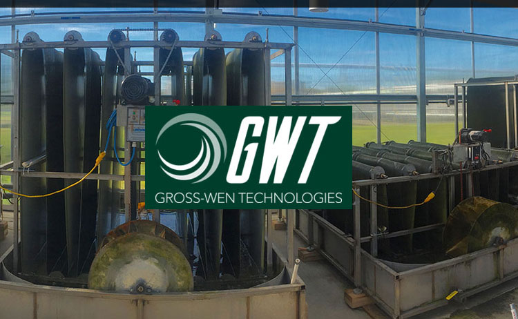 Gross-Wen Technologies